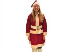 MRS CLAUS Costumes
